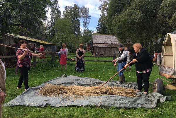estonian farm museum Angus leader
